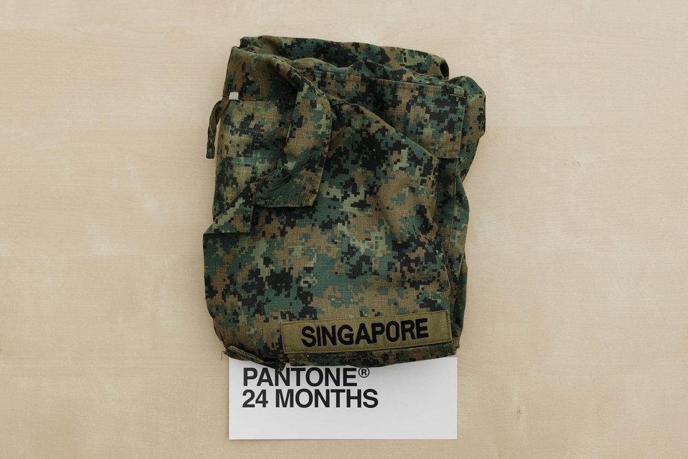 Pantone24Months.jpg