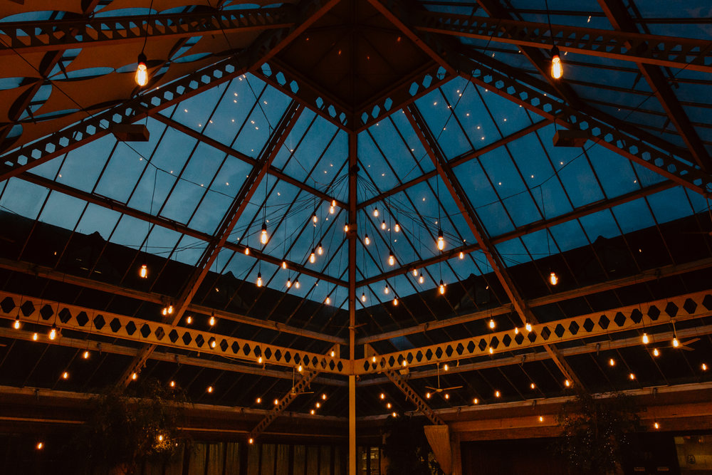- · Pea Light· Floodlights· Festoon· Canopies
