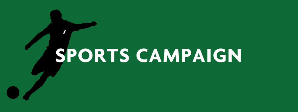 Campaign Header - sports.png