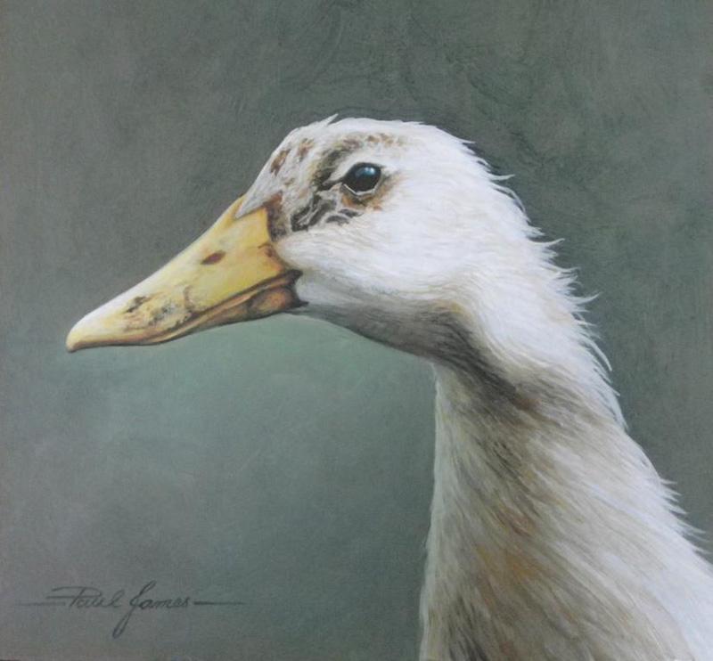 Dirty Duck Head