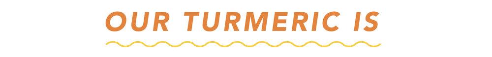 OurTurmericIs_Vectors_Our Turmeric Is.jpg