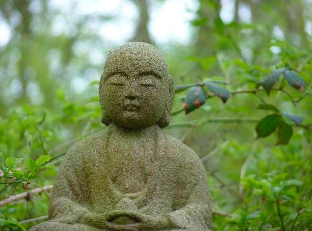 cranio met groene boeddha