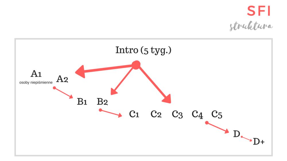 Tak wygląda struktura SFI w mojej szkole. Przez dwa tygodnie byłam na kursie Intro, po czym przeszłam na kurs C5.