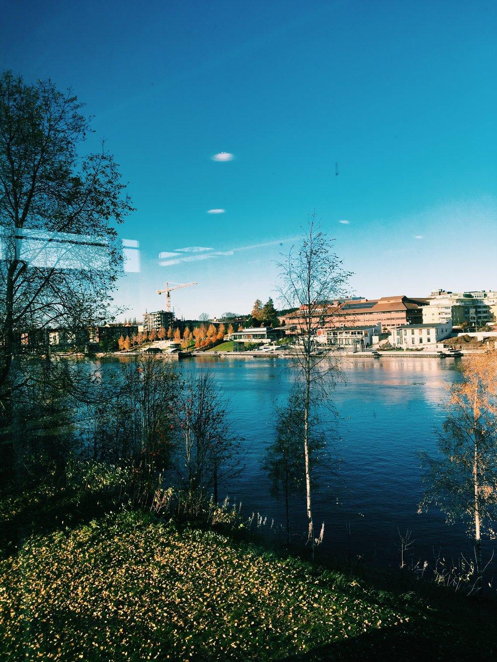Widok z okien biblioteki. Wszystkie ściany w bibliotece są przeszklone i można przyglądać się godzinami niespiesznemu biegowi rzeki.