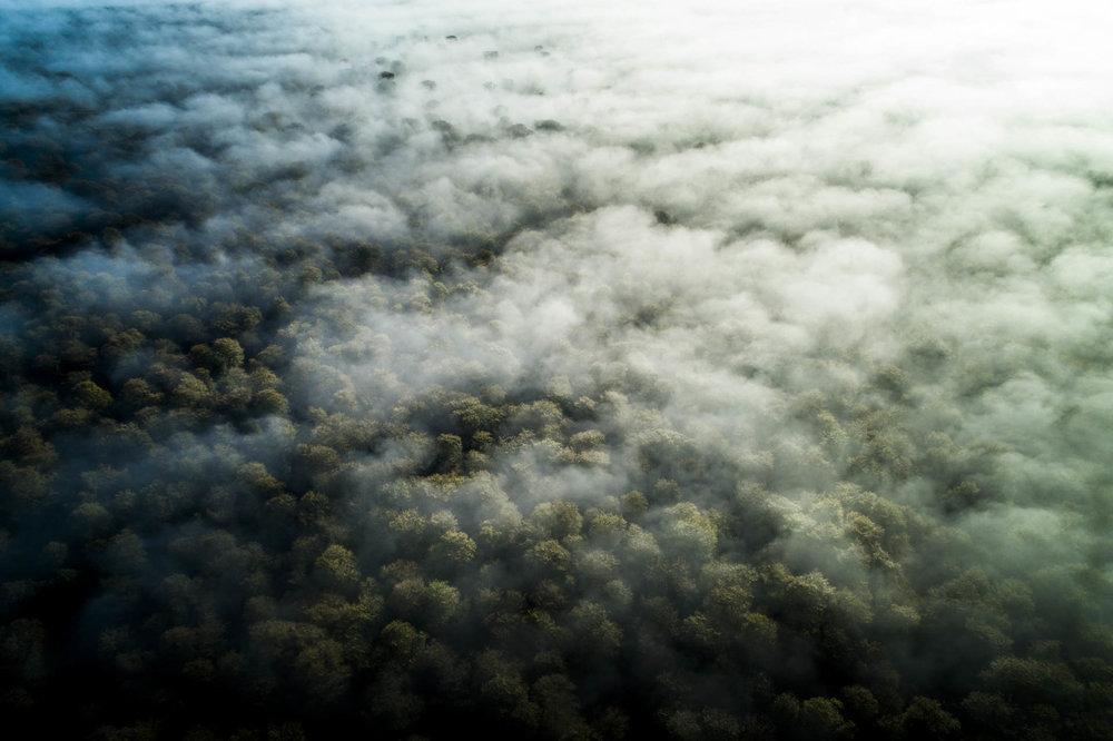 drone_balleroy©stephaneleroy-DJI_0313.jpg