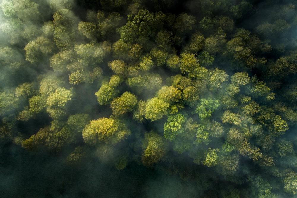 drone_balleroy©stephaneleroy-DJI_0276.jpg