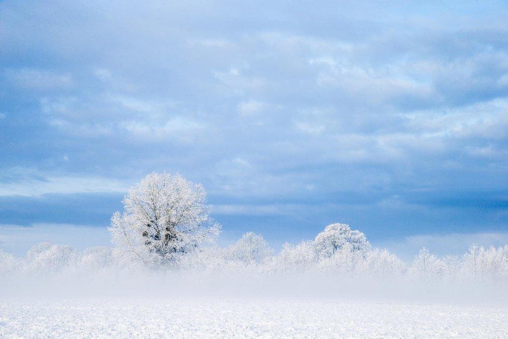 domaine_dablon_exterieurs_hiver©stephaneleroy-5135.jpg