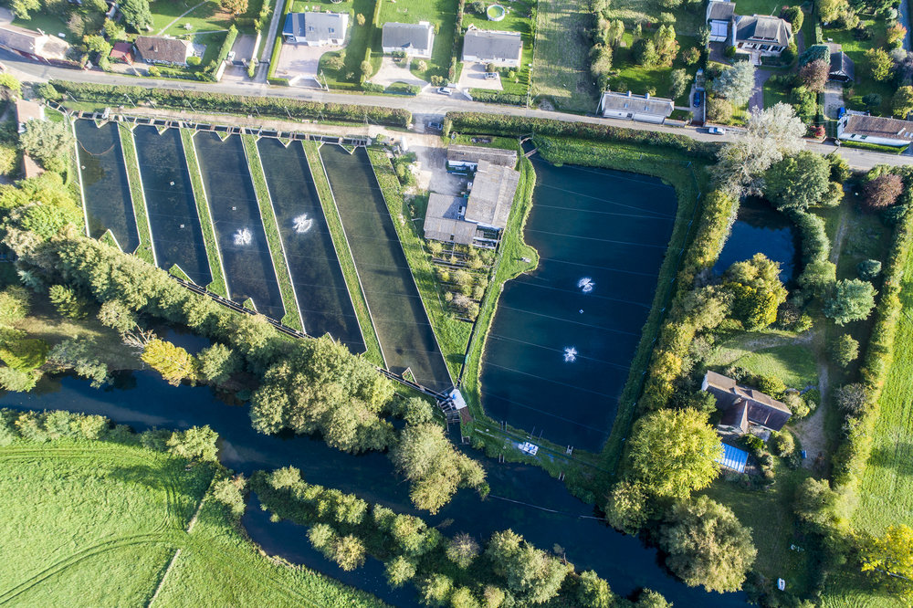 actalia-pisciculture_de_l_eure_normandie-©Stephane Leroy-DJI_0268.jpg