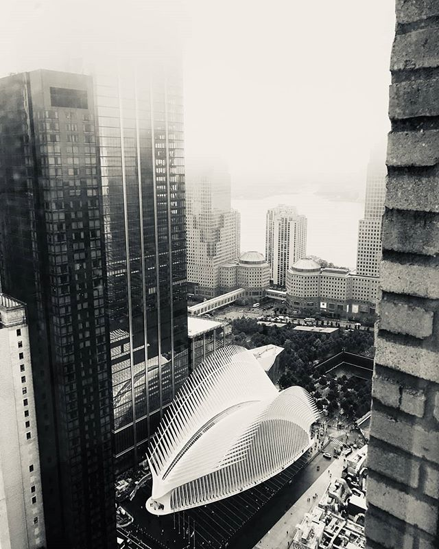 A foggy day from the window of our New York's office  #wearehuman #wearea2plus #architecture #architecturelovers #architectureporn #interiordesign #human #sustainable #love #architettura #architect #architecturephotography #architectureview #newyork #manhattan #fog #buildingview #skyline #nyskyline