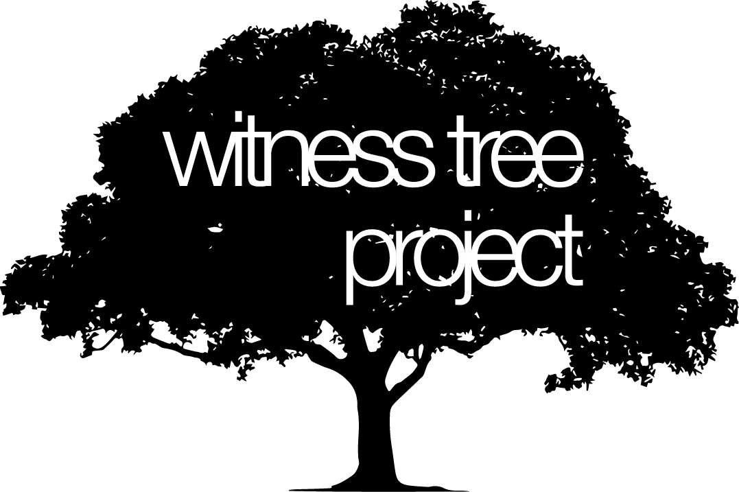 Witness Tree Project