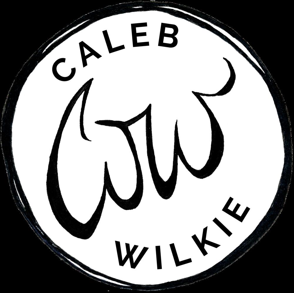 resume caleb wilkie Senior Product Manager Resume resume