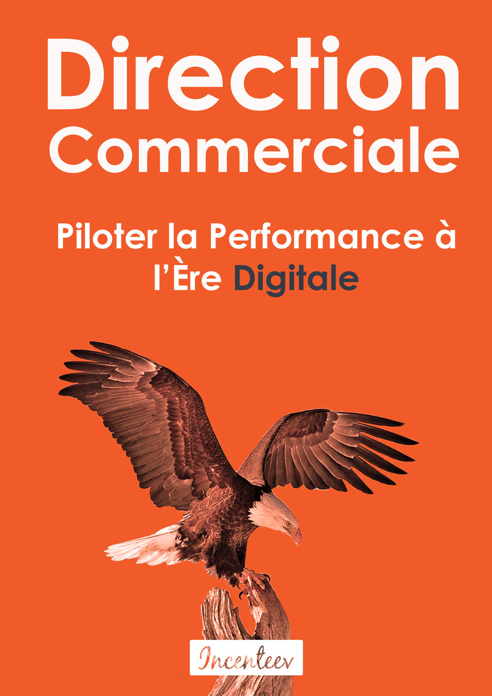 télécharger livre blanc direction commerciale : piloter la performance à l'ère digitale