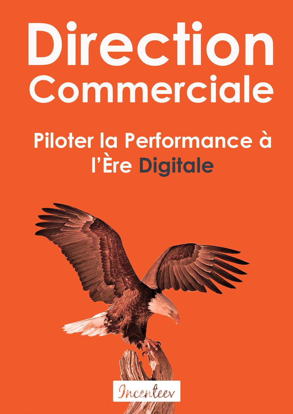 télécharger livre blanc direction commerciale : piloter la performance à l'ère digitale