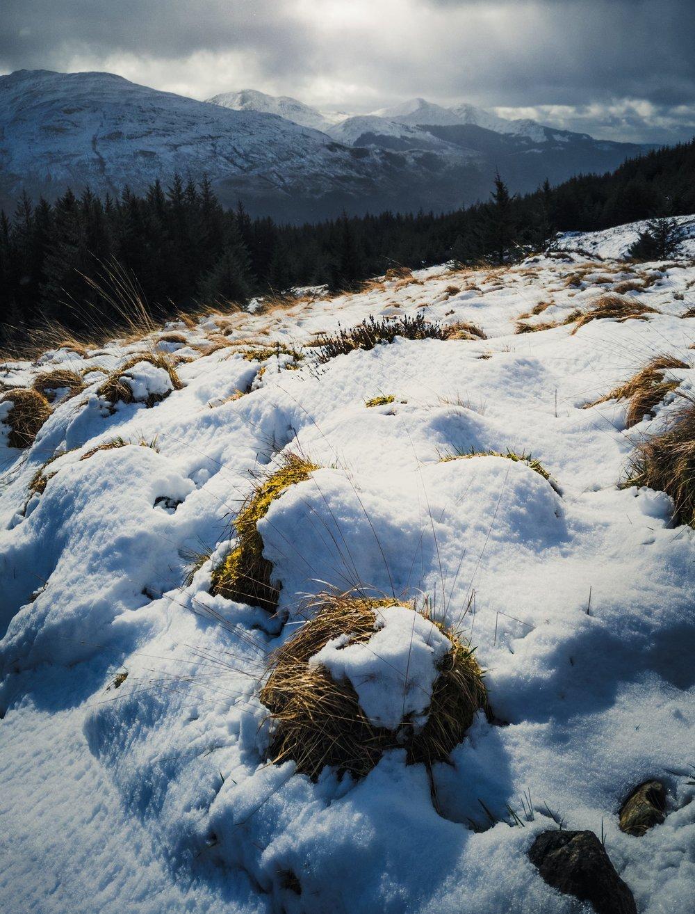 Loch_Lomond-full-08.jpg