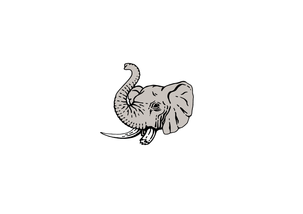 Mighty_Mighty_Footer_Logo.png