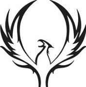 phoenix-rising-exploring-seven-chakras-della-reside