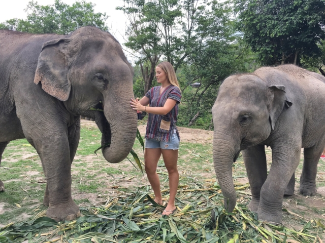 Jaclyn Houston at the Elephant Jungle Sanctuary Chiang Mai