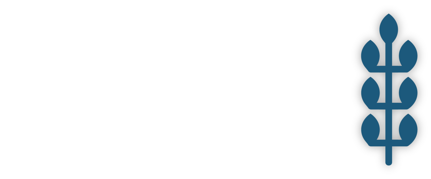 Enter New Fields