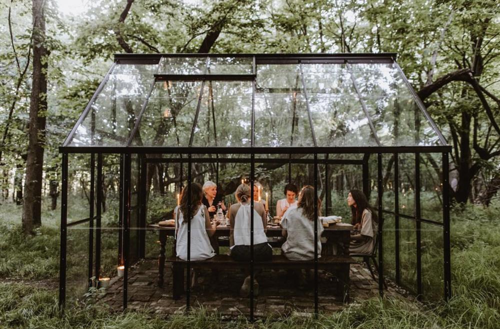 Bear Fox Glass House — Fox Meets Bear