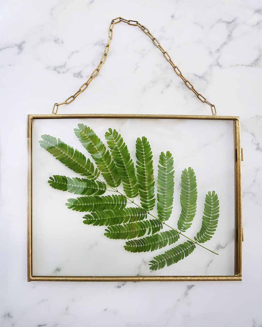 pressed-plant-diy-3-blog.jpg