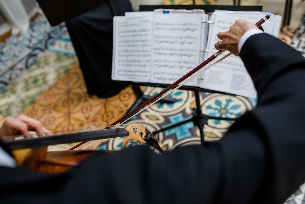 Solo - Flute ~ Harp ~ Cello ~ Violin ~ Piano
