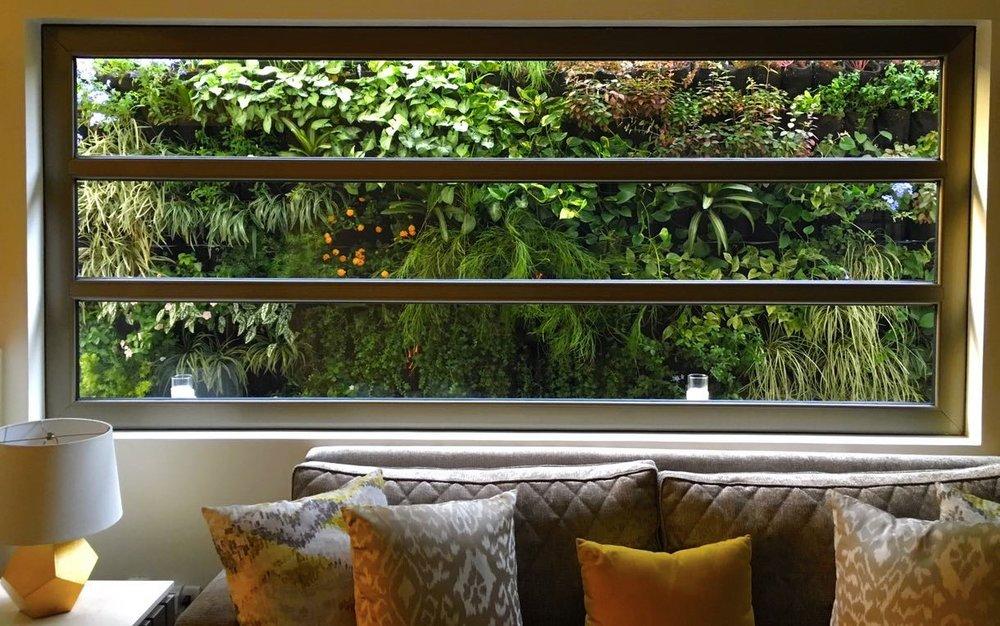 Verde & Naranja @verdeynaranja - Sistema: Jardín Vertical - Bioparametro®, riego automáticoPaisajismo:@caliptra_arquitectura