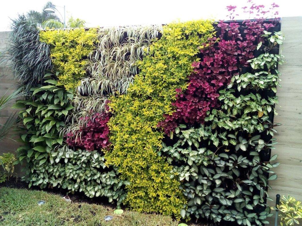 Residencial - Samborondón - Sistema: Jardín Vertical - Bioparametro®, riego automáticoPaisajismo: Denisse Robinson