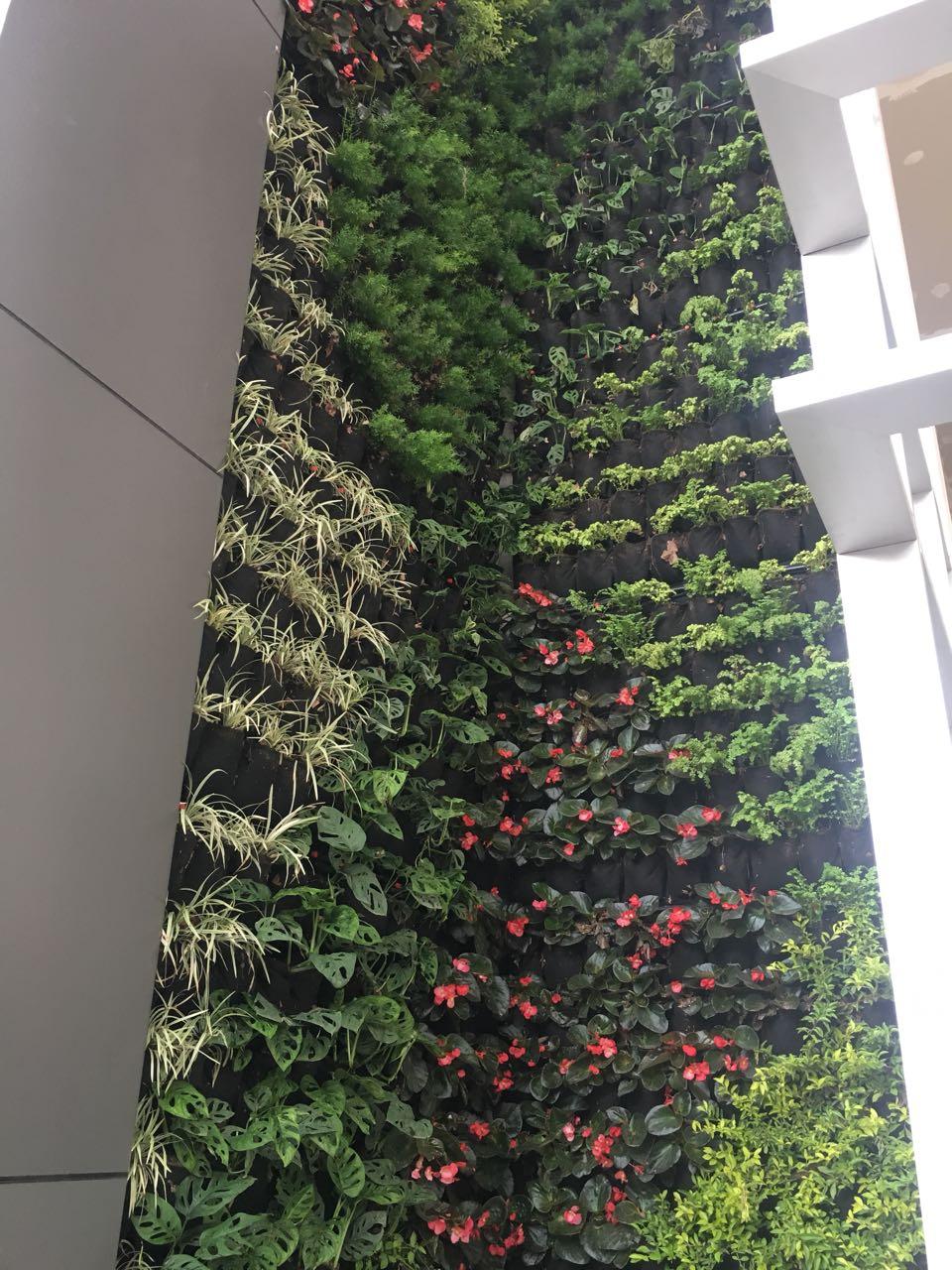 Grupo Torres & Torres - Sistema: Jardín Vertical - Bioparametro®, riego automáticoPaisajimos: @bioparametroec