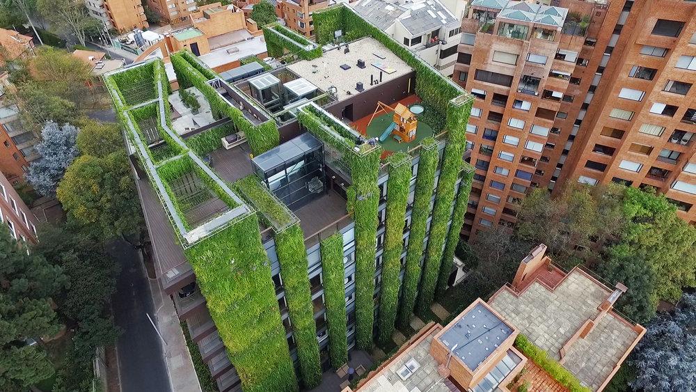 jardin vertical verde