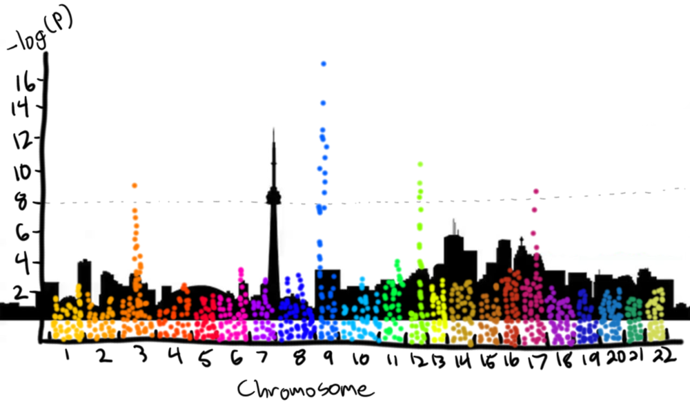 "The output of a genome-wide study is often a Manhattan plot, named after the characteristic ""skyline"" look.  Each genotype's p-value is plotted by its position in the genome. Four gene loci reach statistical significance in this cartoon example."