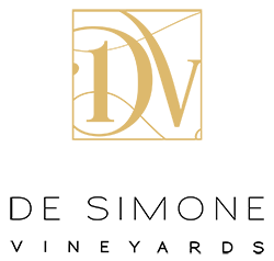 DSV_Logo_FINAL_2.png