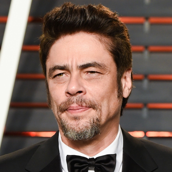 Variety: Benicio del Toro Joins 'Rise and Fall of the Brown Buffalo' as Exec Producer (EXCLUSIVE) - February 19, 2018