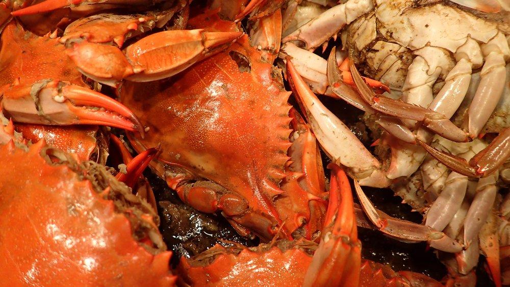 seafood-1013026 (1).jpg