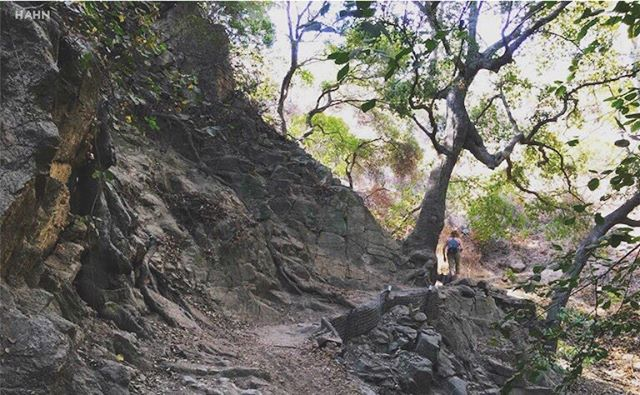 Take some time on this beautiful weekend to #optoutside.  #onearroyo #arroyoseco #pasadenaca #nature #futureyourselfhere #pasadenaviews