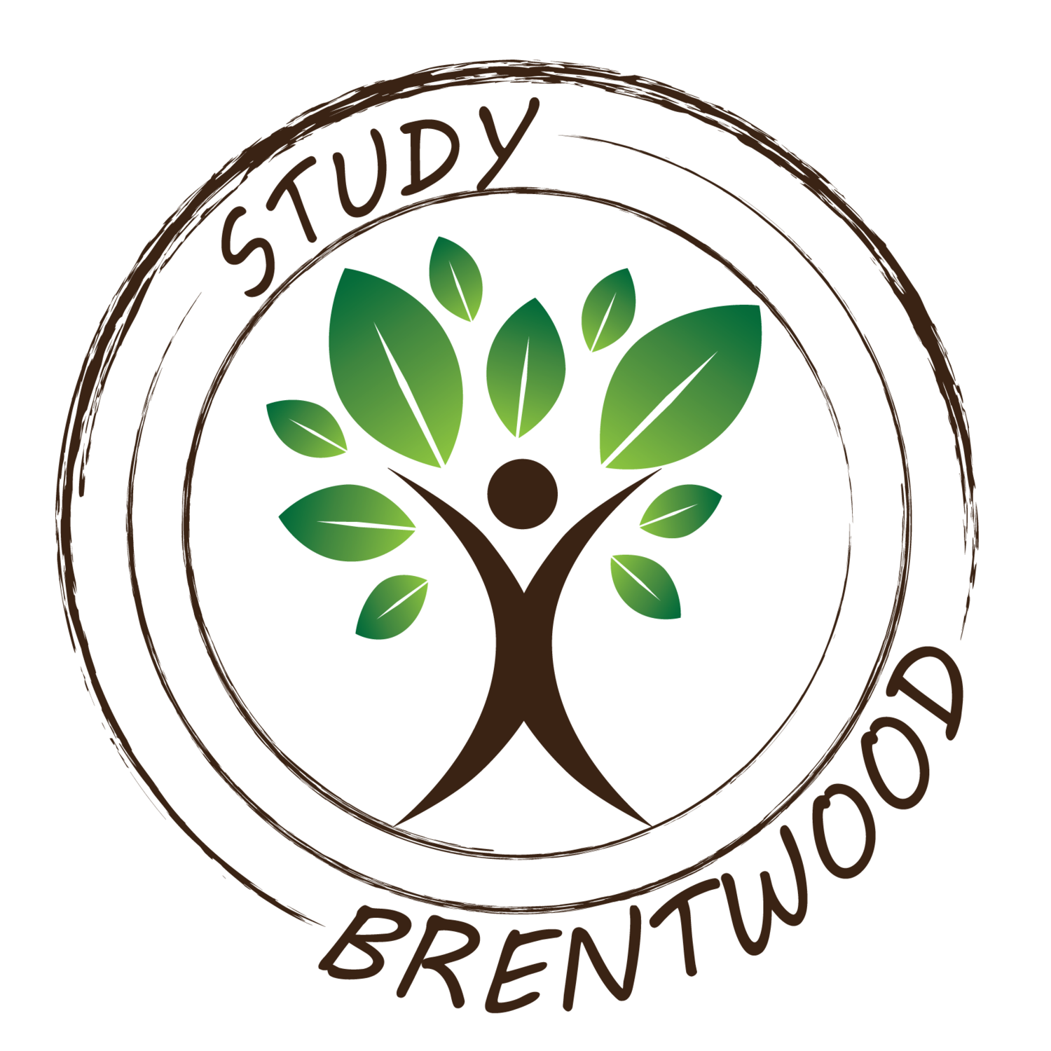 STUDY BRENTWOOD