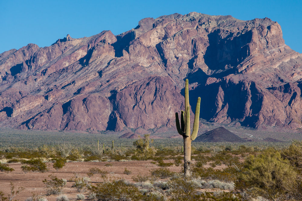 Serving Arizona - Arizona has a unique environment housing a robust urban core, a plethora of small rural communities, and a delicate ecosystem. We've worked in all environments and our project experience proves it!