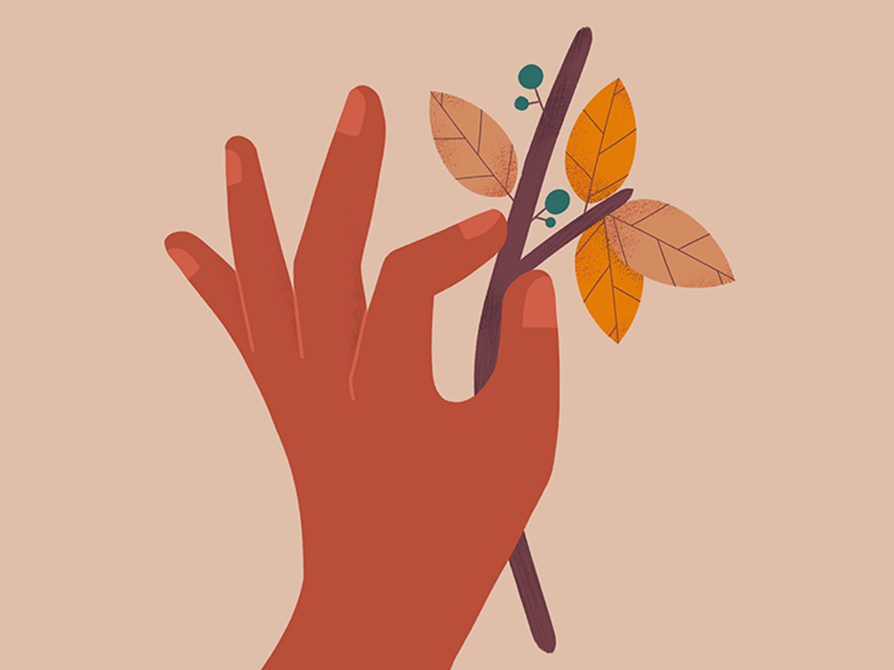 FallTwig_Dribbble.png