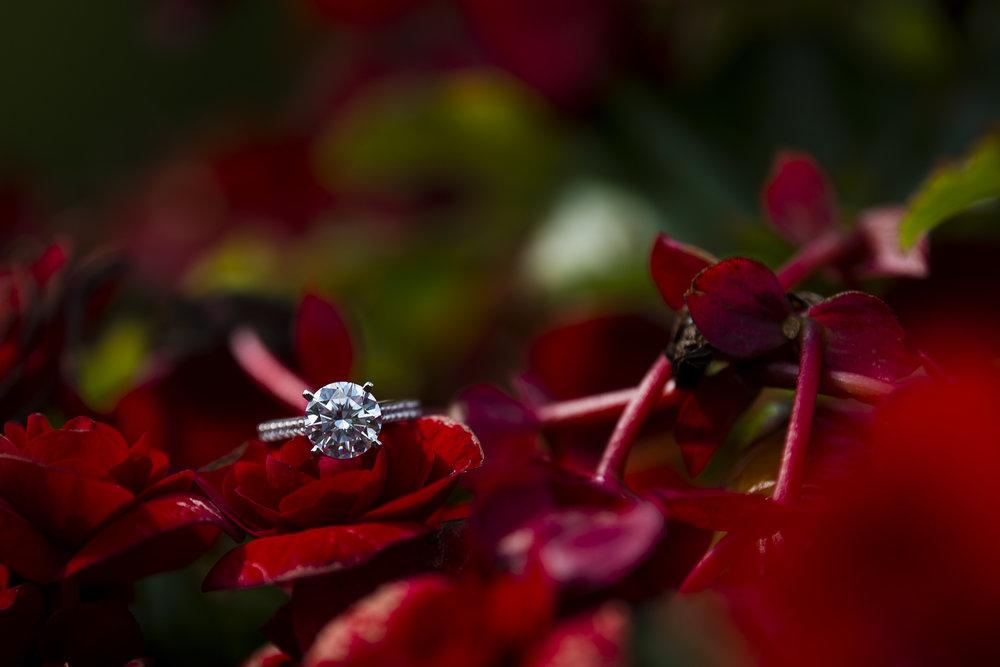 NewYork-wedding-24.jpg