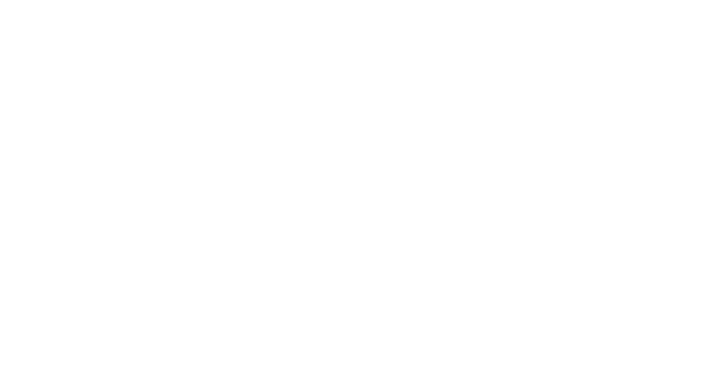 iFLYflat - The Points Whisperer