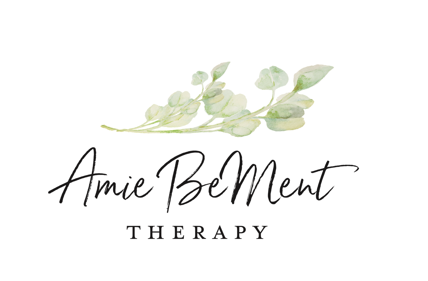 Amie BeMent Therapy