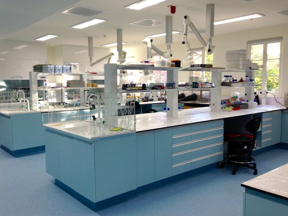 New laboratory, almost ready for research to recommence after the move.