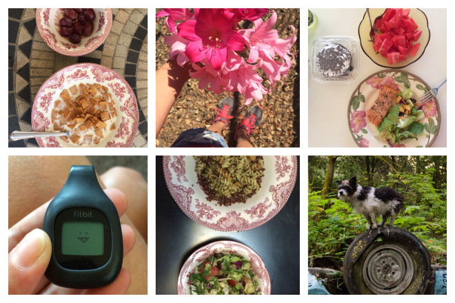 walnut avenue, meghan smolka, kickstartseptember, clean eating,