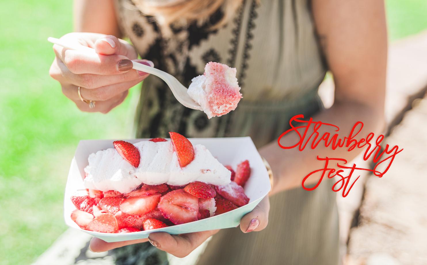 strawberry-fest-2
