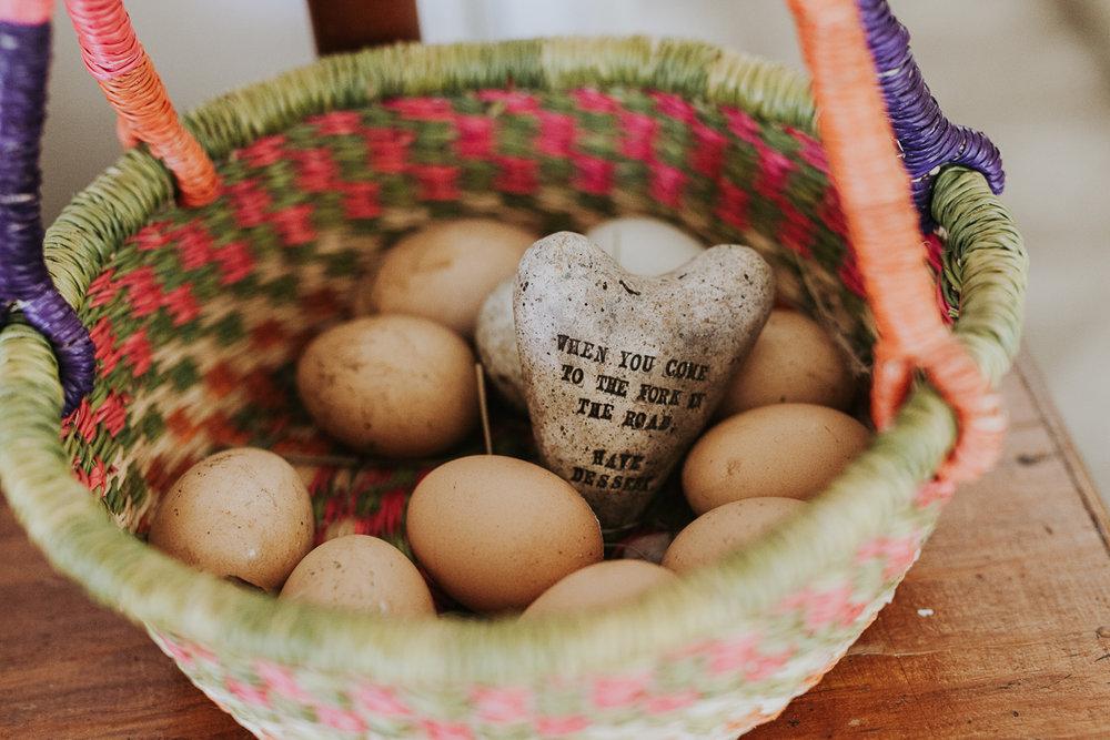 santa cruz blog photography