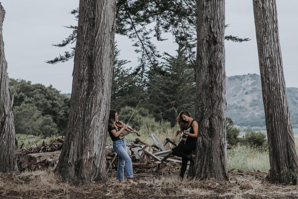 santa cruz photography band portrait album california