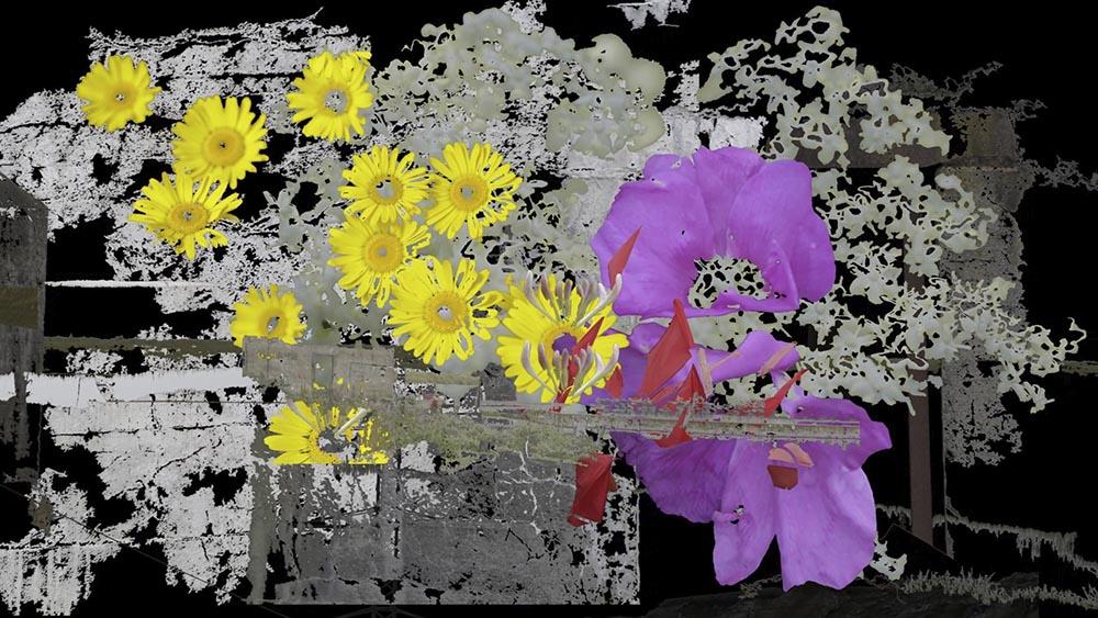 RBL-still_web-01.jpg