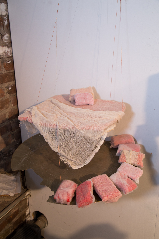 Sleep Installation (The Orgy Bed)