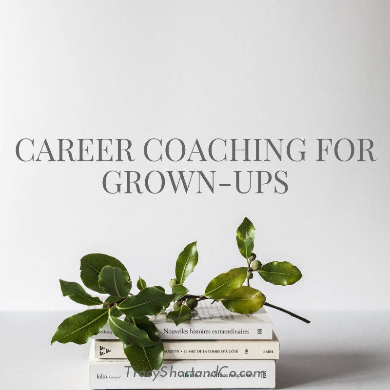 Career coaching for grown-ups.jpg