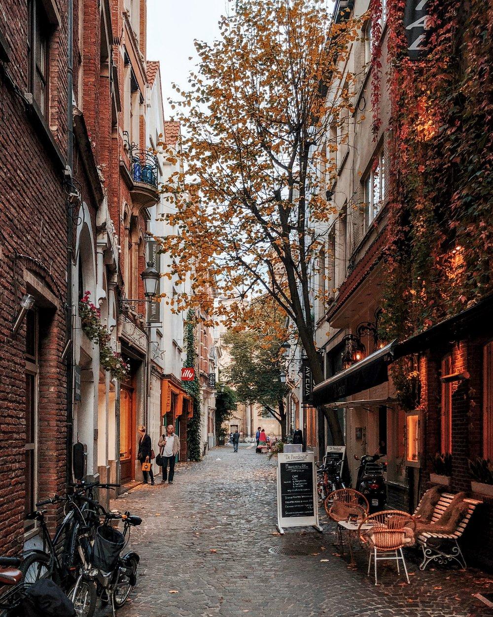 Antwerp - Ellie Dyduch
