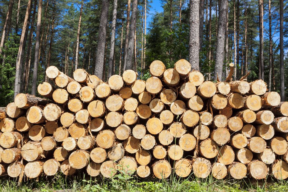 Forestry -